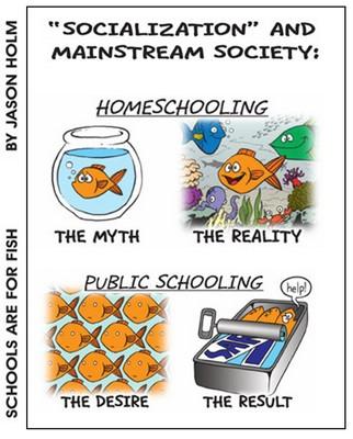 Afbeeldingsresultaat voor socializing home schooling