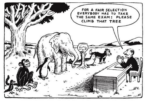 equal testing has all animals climb a tree